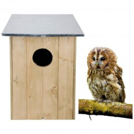 Brown Owl nesting box